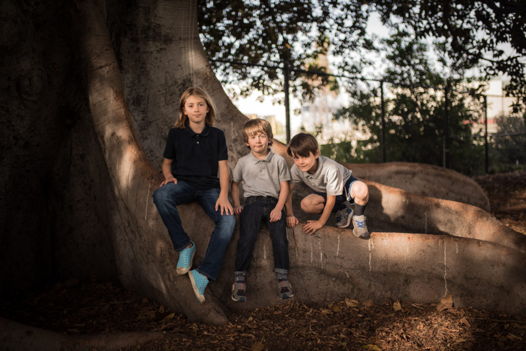Three brothers pose sitting on the branch of a big tree and the reflection of the sun coming through during a family photography session with Artshaped photography in Santa Monica, California.