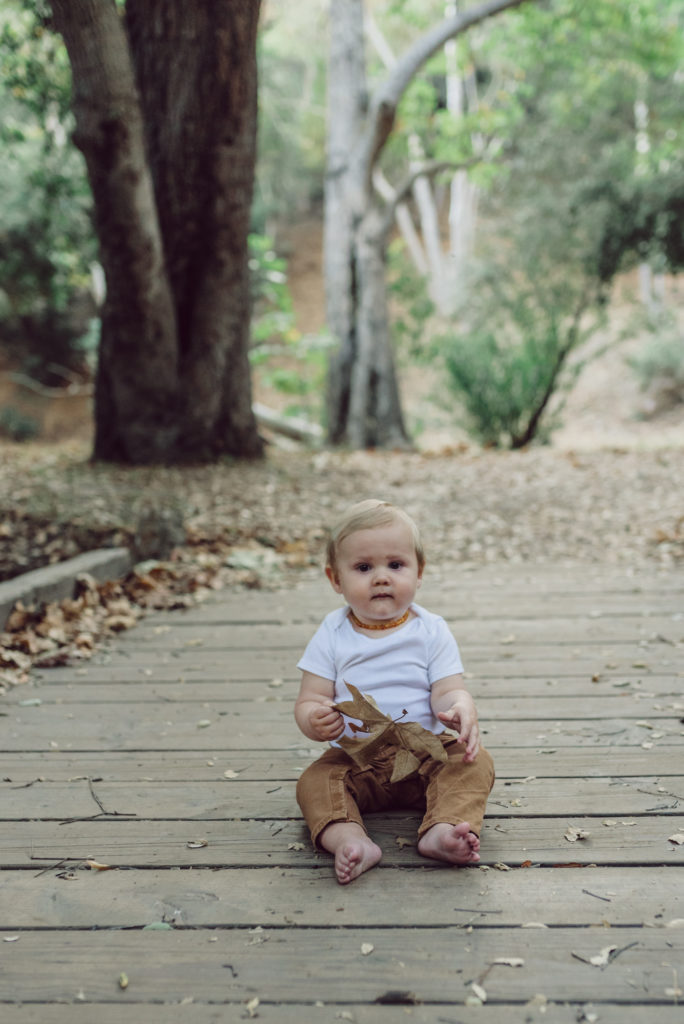 Toddler sits on a wooden bridge while holding a leaf and is photographed by artshaped photography